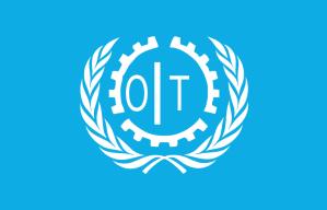 n19-800px-Flag_OIT