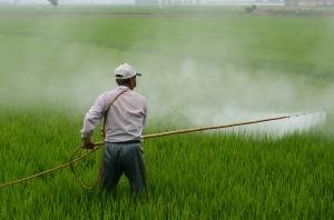 Les agriculteurs sont particulièrement concernés par certains cancers, par les accidents de travail et les suicides.
