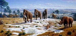 Vue d'artiste du sud de l'Espagne du pléistocène. On sait qu'il y a 20000 ans, avec des températures d'environ 5°C plus froides qu'actuellement, les âges glaciaires se caractérisaient par la présence de calottes de glace de plusieurs kilomètres d'épaisseur sur l'Europe et l'Amérique du Nord