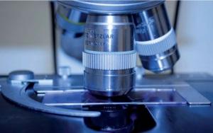 La biologie synthétique ouvre de nouveaux horizons qui pourraient révolutionner la science.